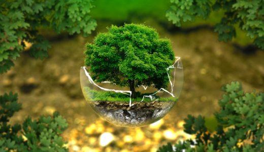 環境を変えたら成長できた件【今の仕事が辛いなら】